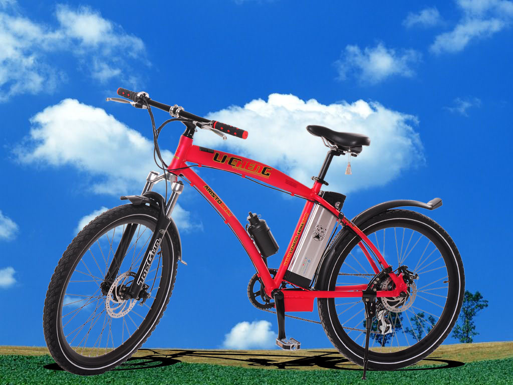 China Mountain Electric Biks (LC-TDM-2613A)