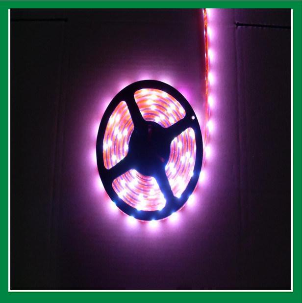led spotlight shenzhen copin lighting co ltd page 1. Black Bedroom Furniture Sets. Home Design Ideas