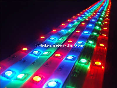 China Waterproof LED Strip Lights Outdoor LED Ribbon