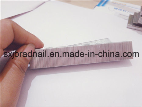 High Quality 416j Pneumatic Nails Sofa Staple