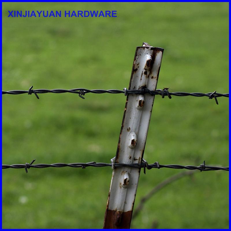 Galvanized Vineyard Barbed Wire Hot Sale