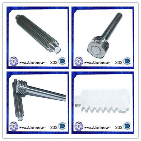 Custom Small Metal/ Plastic Worm Gear