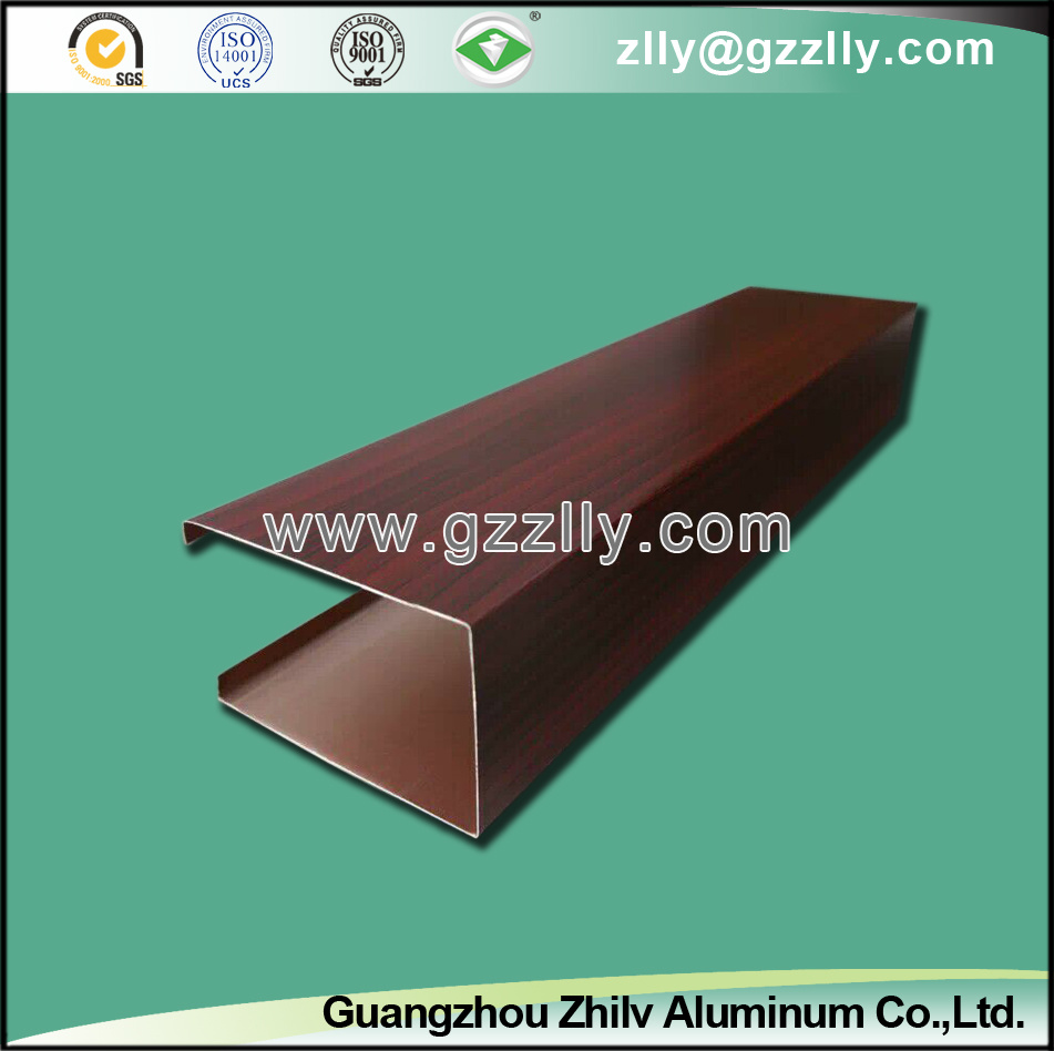 Aluminum False Ceiling for Outdoor