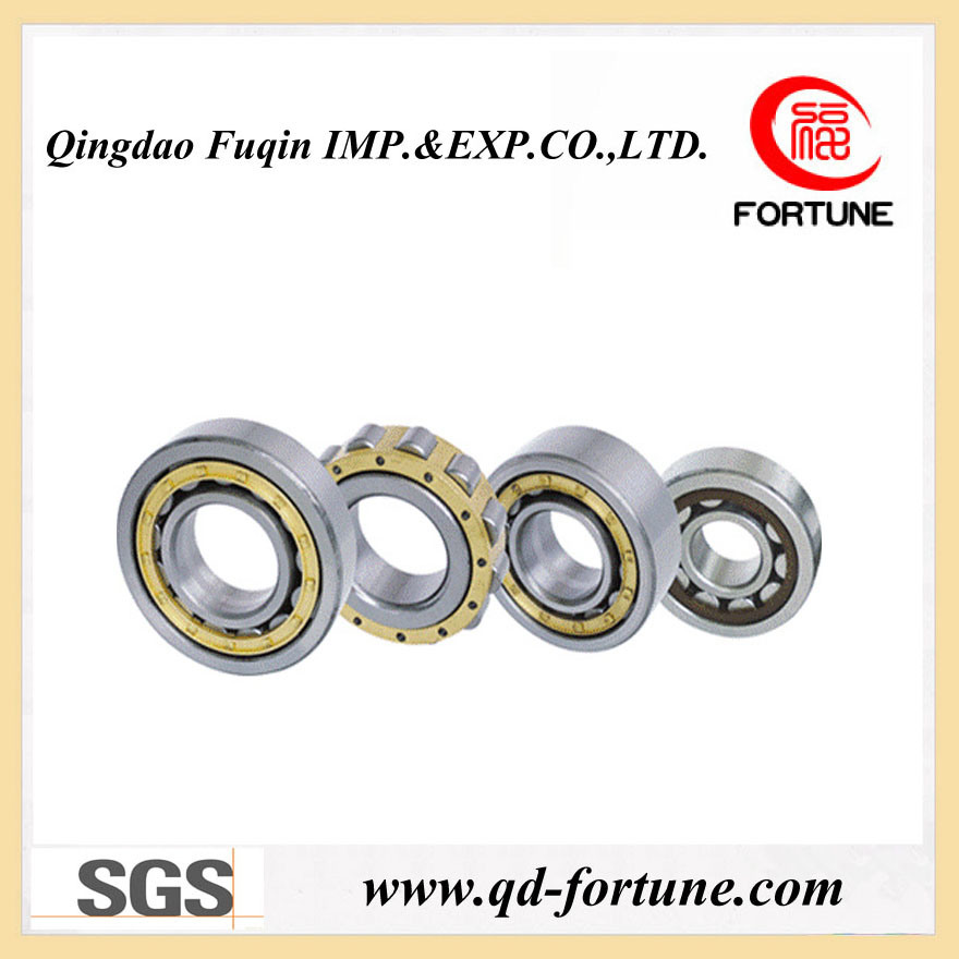 Metric Size Ball Bearing (6007-2RS)