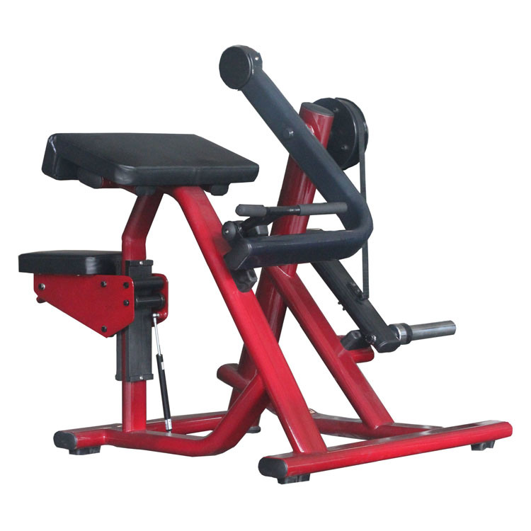 CE Certificated Gym Equipment, Fitness Machine, Biceps Curl (SF01)