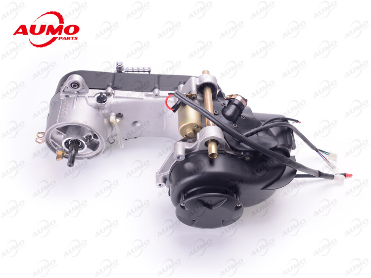 50cc Two Strokes Engine Assy for Longjia Lj50qt-2L L-Evo Motorcycle Parts