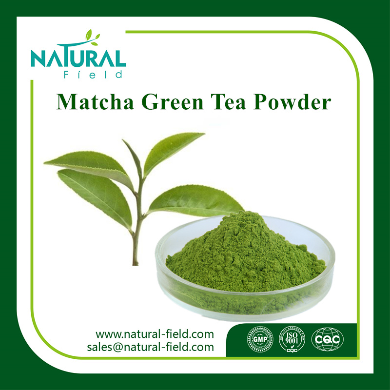 Food Supplement Matcha Tea Powder