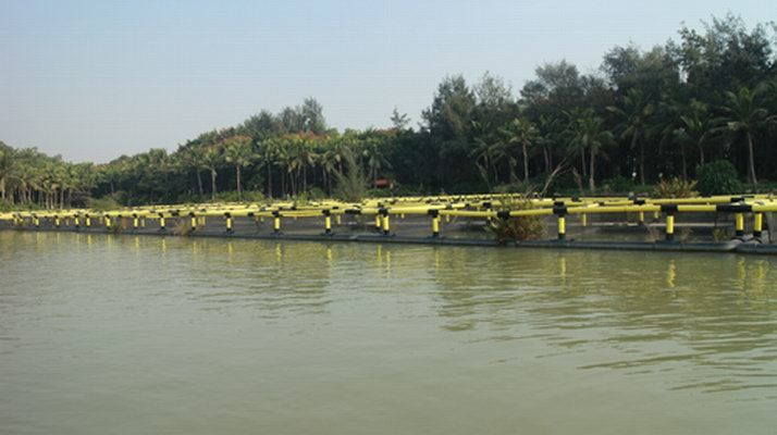 Offshore Aquaculture Equipment Square Plastic Fish Farming Cage