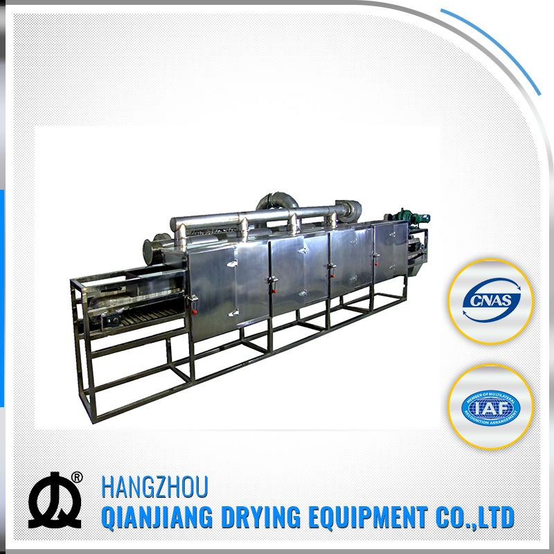 Dw Series Continous Food and Vegetable Conveyor Belt Dryer