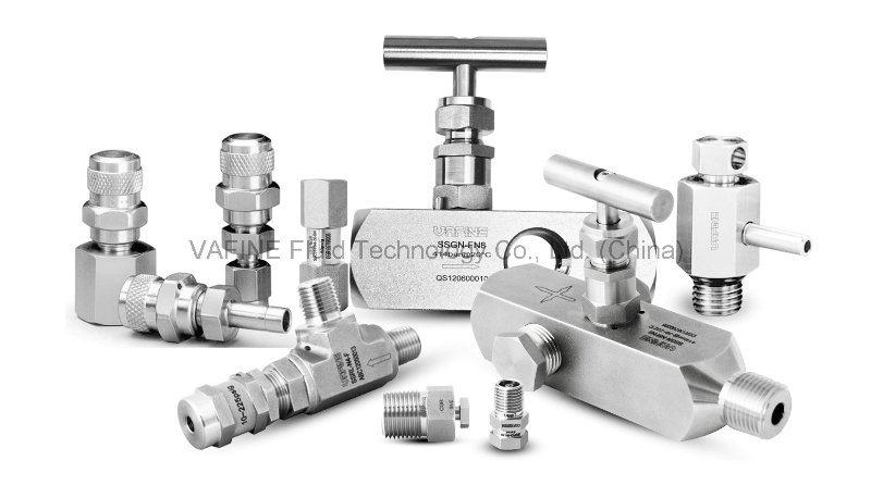 6000 Psig High Pressure Applications Gauge Valves