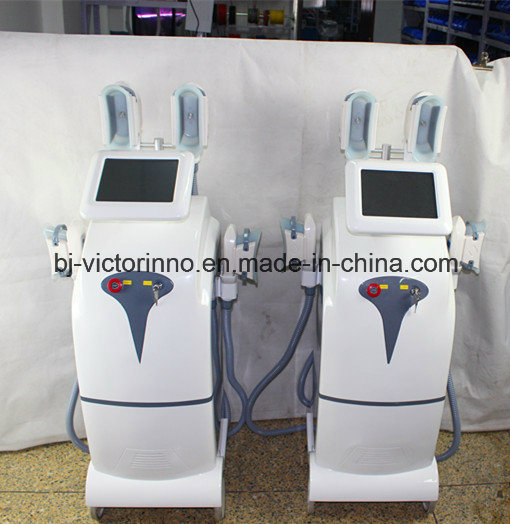 2017 Vertical Body Slimming Cryolipolysis Weight Loss