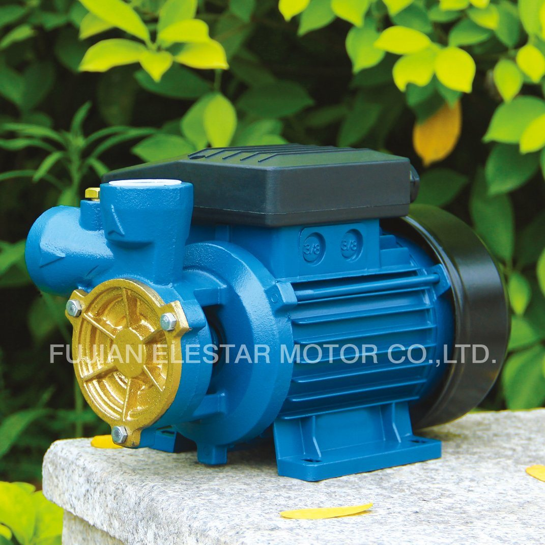 dB Series Single-Stage Pump Structure and Electric Power Peripheral