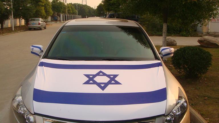 Car-Mirror-Cover-Hood-Cover-QXH-002-.jpg