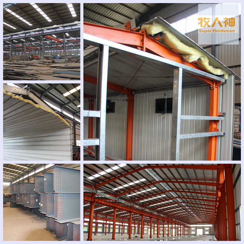 Steel Structure in Farm with Full Set Poultry Equipment