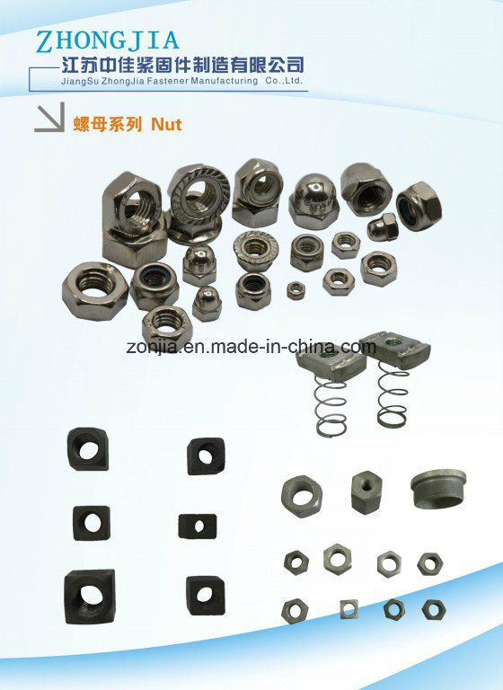 Hex Nuts/ Square Nuts/ Round Nuts