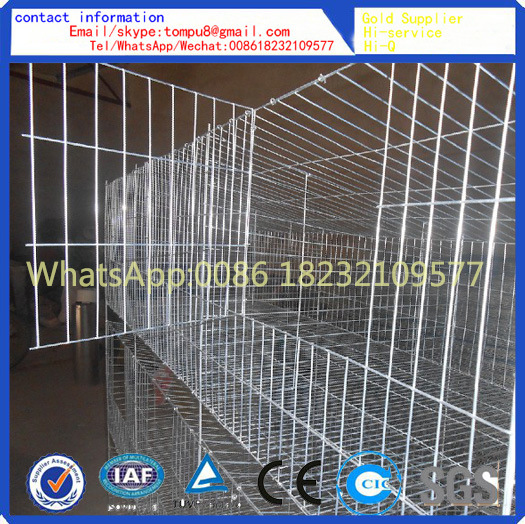 New Design Rabbit Cage