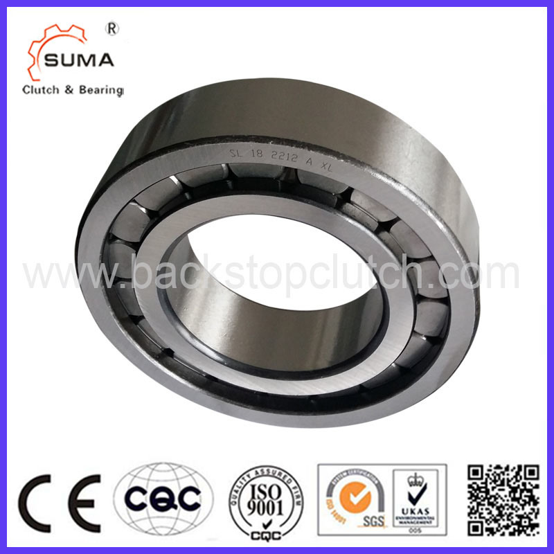 Full Complement Cylindrical Roller Bearing (SL183006)