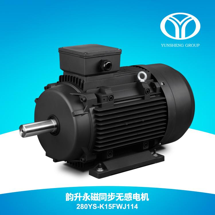 AC Permanent Magnet Synchronous Motor 132kw 1500rpm