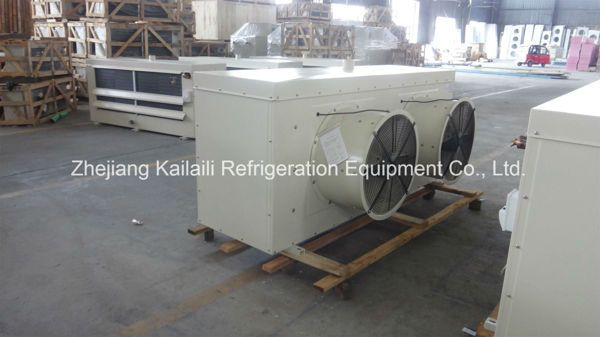 Dd-200 Hot Sale Air Cooler Fan for Cold Storage