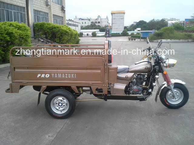 Customizable Tricycle for Passenger or Goods