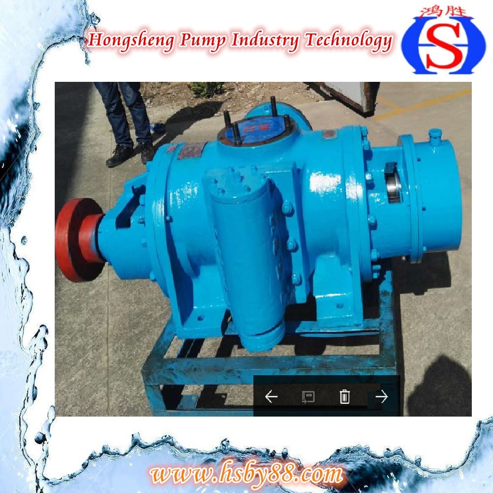 Vertical Double Screw Pump with High Qualicaty