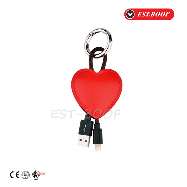 Case Decoration Key Ring Charger Wire USB Cable for iPhone