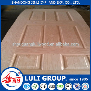Door Skin From Luli Group