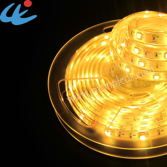 China Outdoor RGB Waterproof SMD5050 LED Strip Light