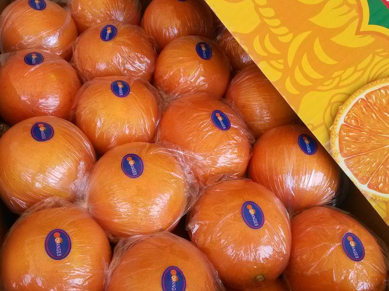 Exporting (GLOBALGAP HACCP) Fresh Pomelo