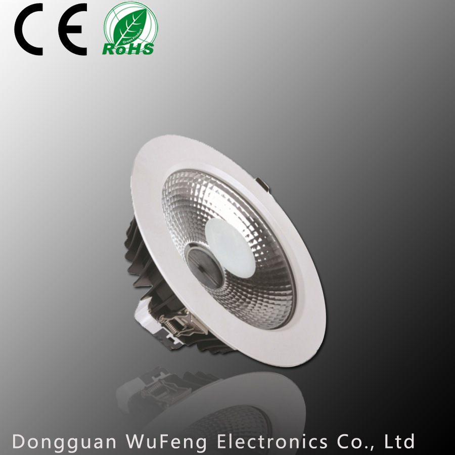 40W LED Spot Light (WF-DL230C-40W)