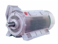 Electric Motor/ AC Motor/ Hv Motor/Inducton Motor