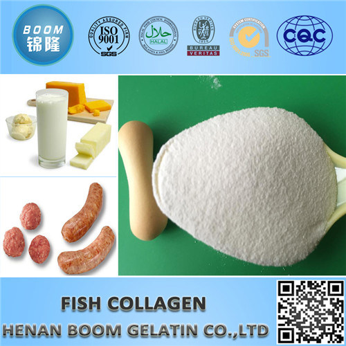 Applicable to Beverage for Fish Collagen as Food Additives