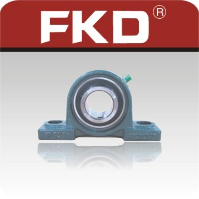 Pillow Block Bearings (UC)