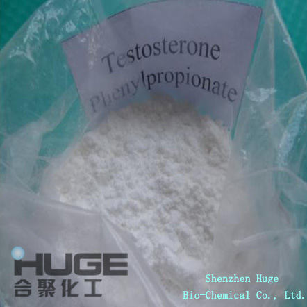 99% Purity Testosterone Phenylpropionate Hormone Powder for Muscle Building