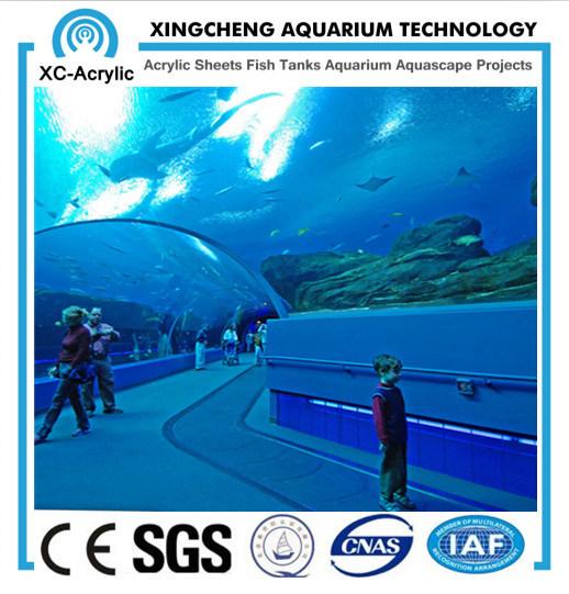Organic Glass Tunnel