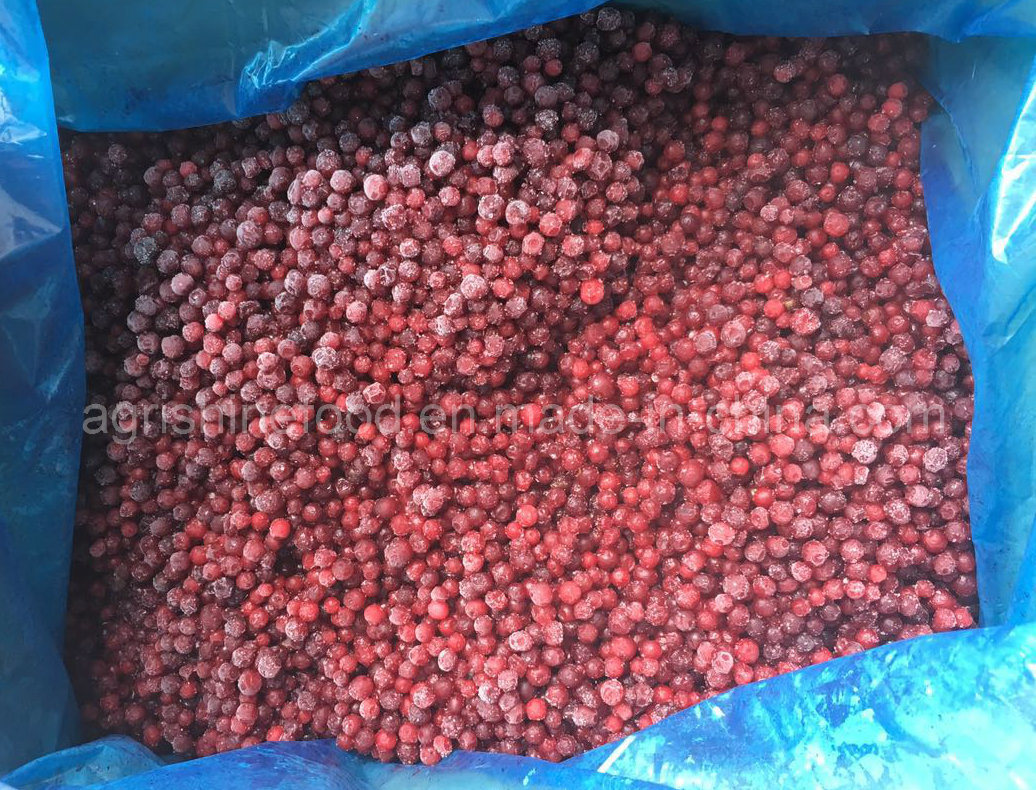 Frozen Lingonberry or IQF Lingonberry