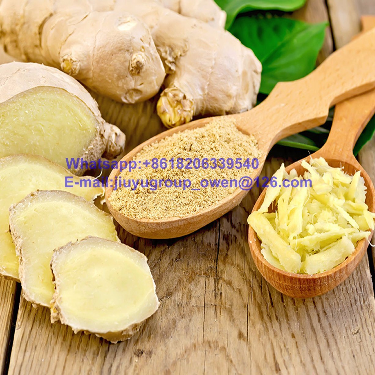 Chinese Fresh Vegetable Dried Ginger