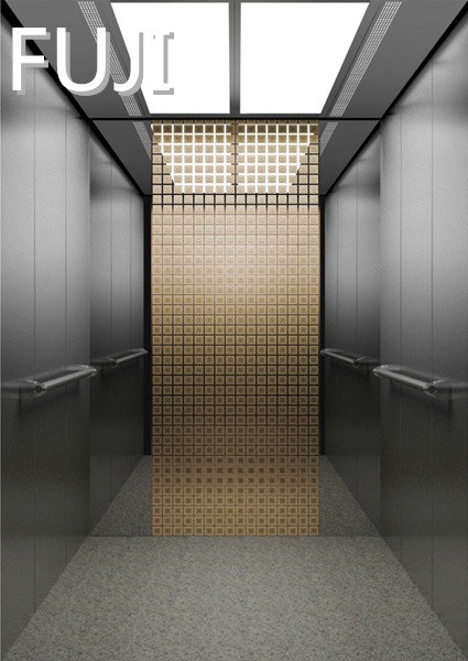 Passenger Elevator / Lift Two Colour to Choice