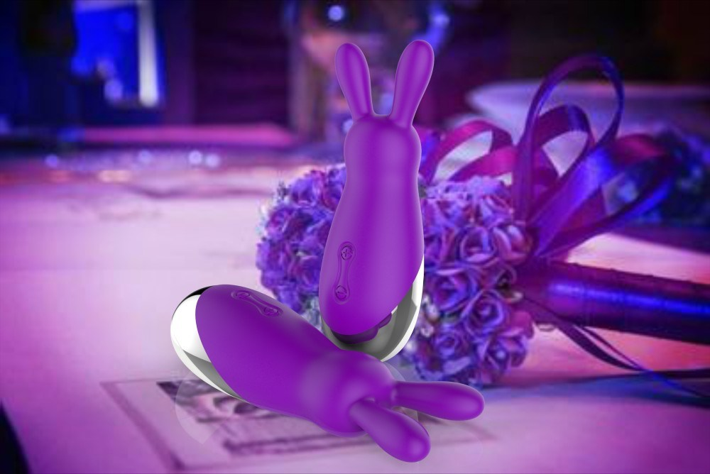 Portable 10 Speed Women Use Artificial Penis Sex Toy Rabbit Vibrator Wholesale