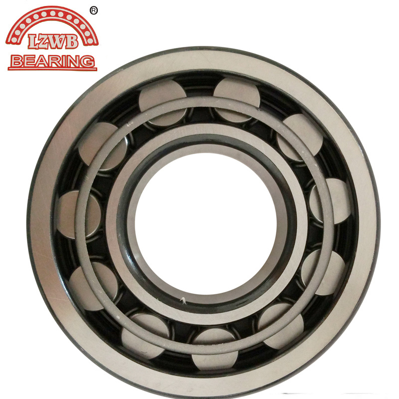 Cylinderical Roller Bearing with High Quality and Best Price