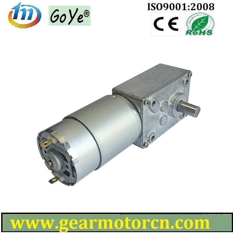 Gyw58-B 58mm Base Electric Equipment and Apparatus 6V-24V DC Worm Gear Motor