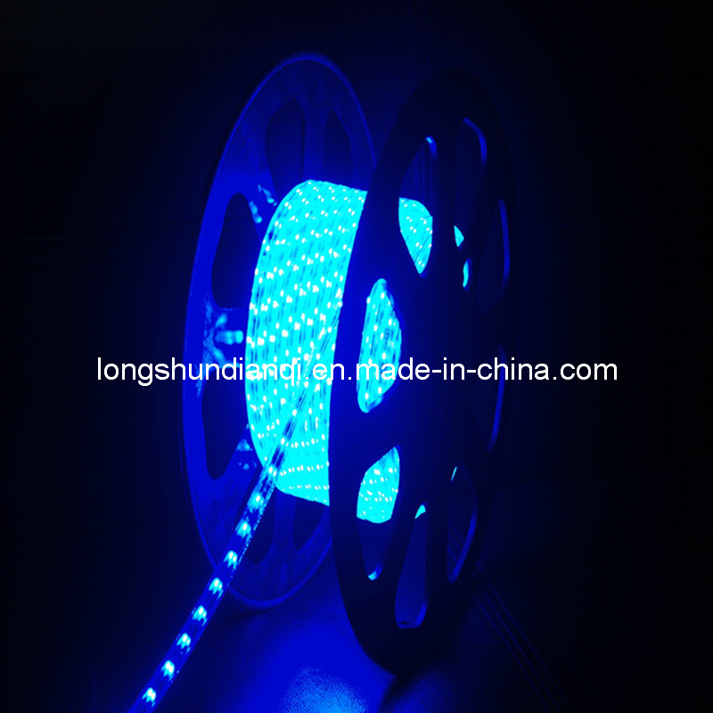 LED Rope Light Outdoor (LS-LED-CHG-2W)