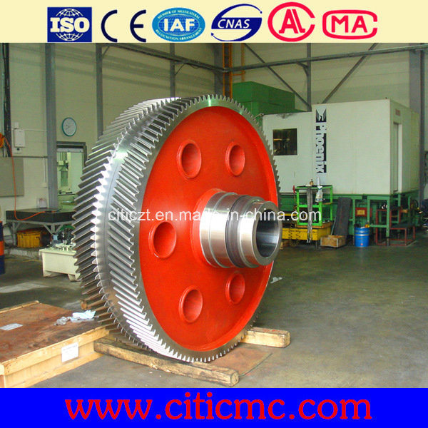 Citic Hic Large Wheel Gear