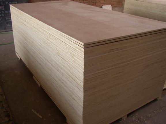 Plastic Birch Plywood with High Quality