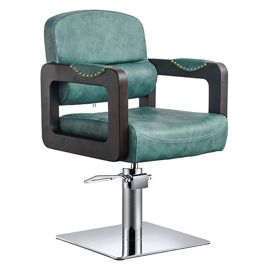 Unique Salon Chair with Stainless Steel Base Za03