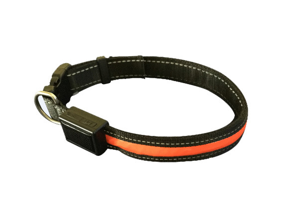 Solar & USB Rechargeable LED Dog Collar