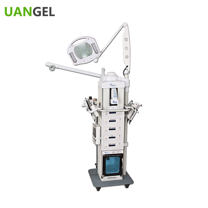 19 in 1 Facial Beuty Salon Equipment Beauty