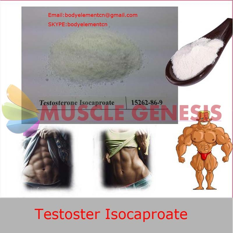 Injectable Steroids Liquid Vials Testosterone Isocaproate for Male Hypogonadism (Test I)