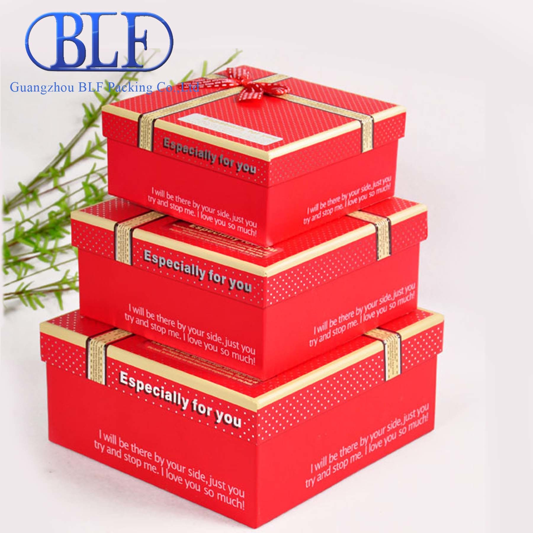 Color Printed Paper Cardboard Gift Boxes Packing (BLF-PB011)