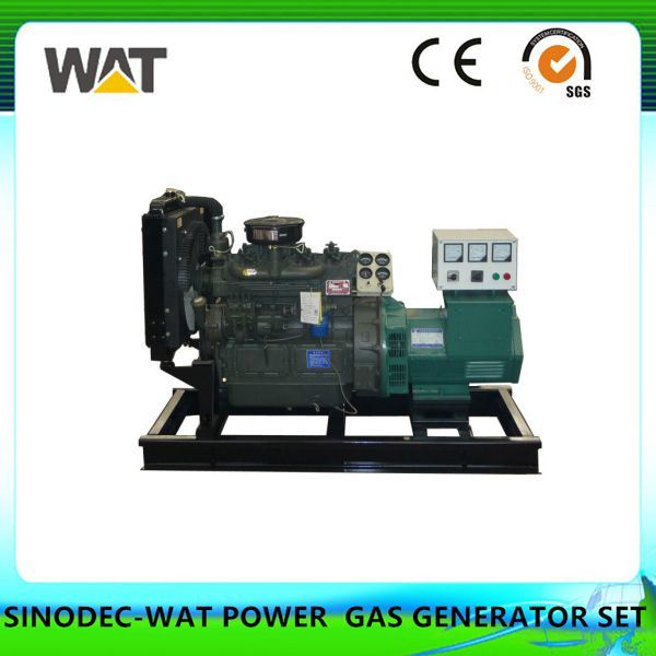 50kw Cummins Biomass Gas Generator Sets From China